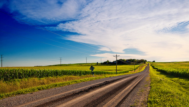 Iowa Landscape   Iowa is a state located in the Midwestern ...