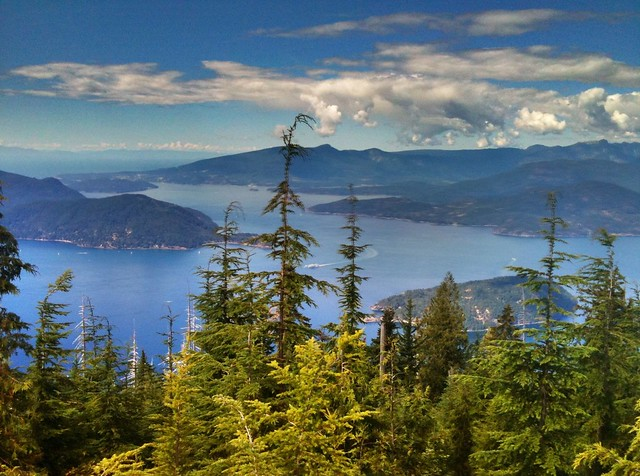 Bowen Lookout Cypress Mountain