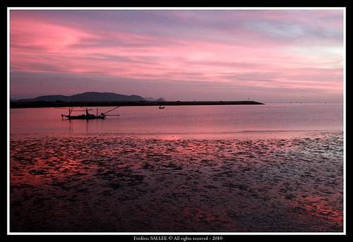 pink sunset sun water rose sunrise canon landscape thailand boat asia eau southeastasia fishermen purple violet thaïlande asie bateau paysage kosamui kotao kophangan thailande leverdesoleil kosamet chumphon pêcheurs canoneos400d