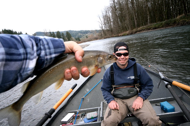 Big wild mckenzie trout chasing chubby nymphs on for Mckenzie river fishing report