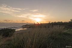 sunset plage de bois blanc