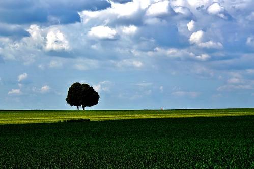 Einsamkeit - Solitude - Solitudine