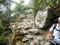 Bocca di Monaco - Presarella - Giannucciu : après les bergeries, le chemin de la longue traversée incurvée
