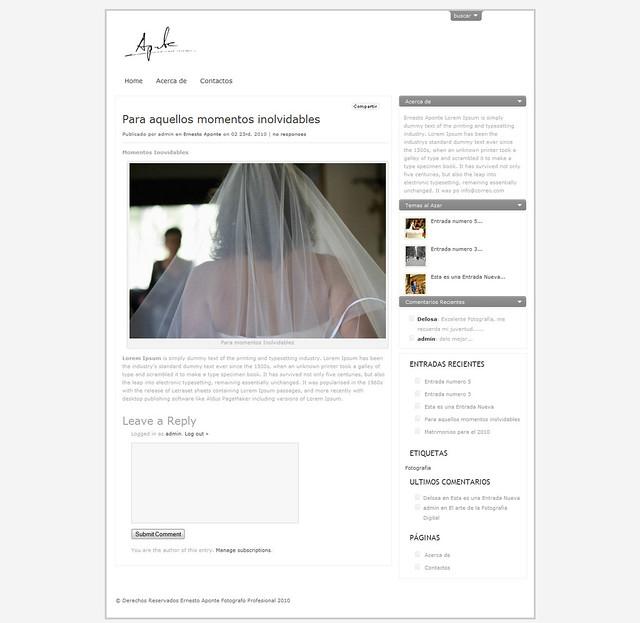 ap-blog2