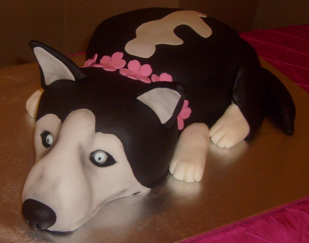 Dpasteles Cake Shop San Antonio TXs Most Interesting Flickr