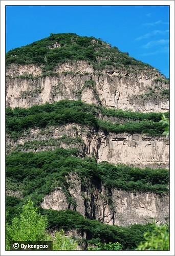 【图】白云岩中夹泥质条带