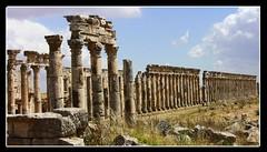 SYRIEN - Apamea + Palmyra,  hist. tour