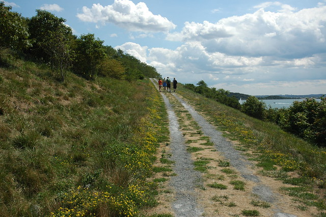 Walking on Spectacle Island