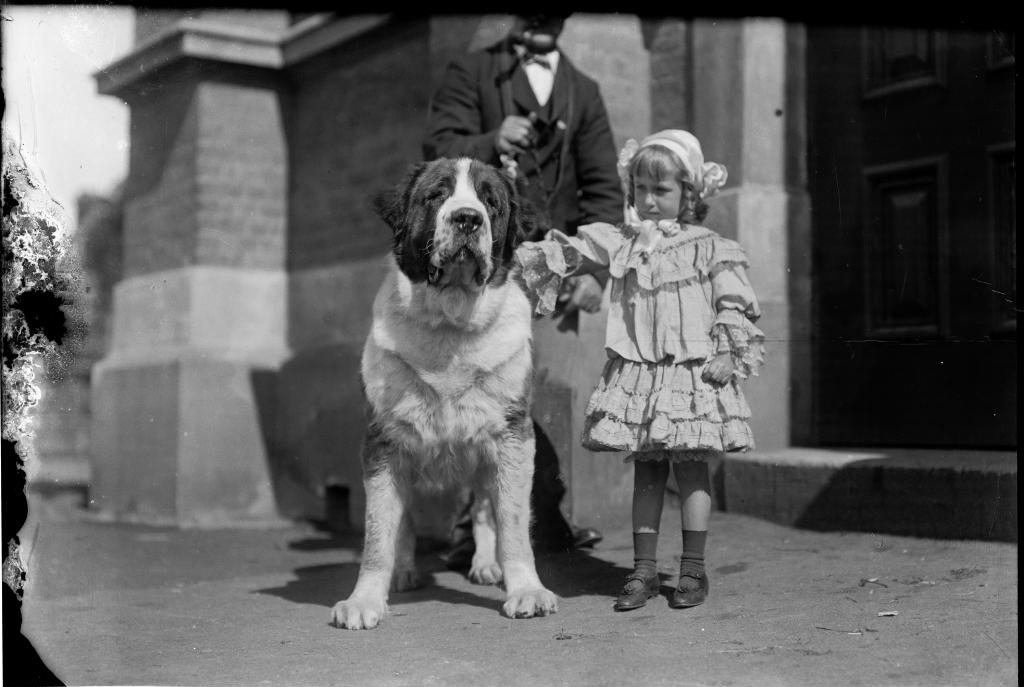 A small girl with her large dog