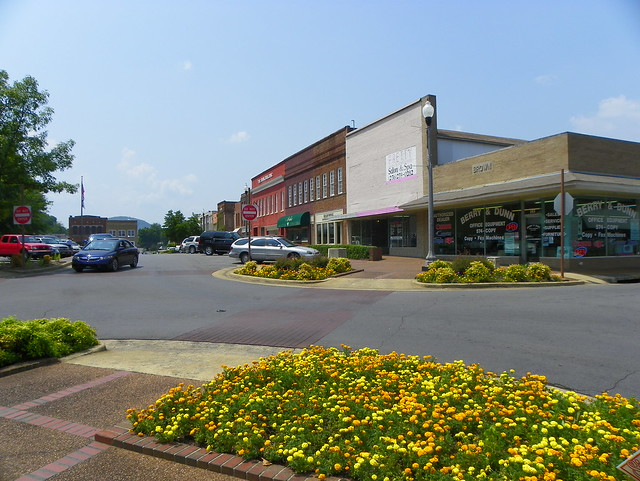 Fast Food In Scottsboro Al