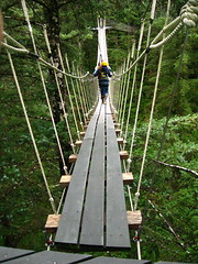 outdoor structure(0.0), mast(0.0), rolling stock(0.0), track(0.0), suspension bridge(1.0), canopy walkway(1.0), rope bridge(1.0), bridge(1.0),