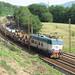 11_08_2010-rigoroso_e656-464