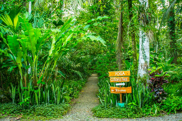 5 Things To Look For When Choosing The Best Eco Resort In Costa Rica