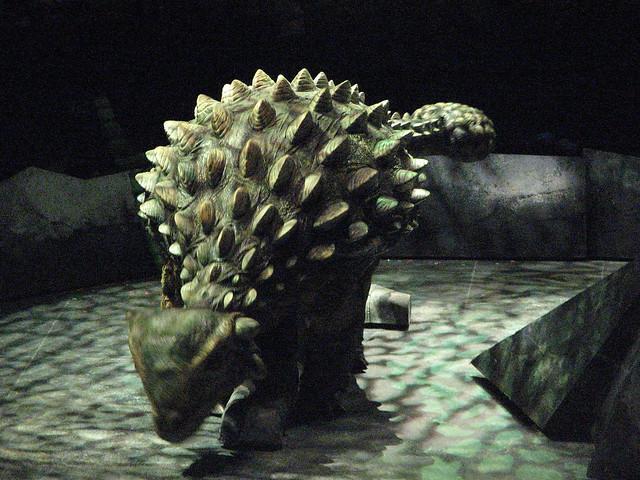 Ankylosaurus | Flickr - Photo Sharing!