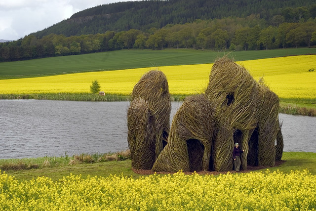 Close Ties, 2006. Willow saplings, 12' to 22' high. Scottish Basketmakers Circle, Dingwall, Scotland. Photo by Fin Macrae.