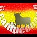 ¡¡ CAMPEONES !! by Darco TT
