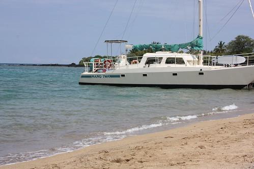 Manu Iwa Catamaran