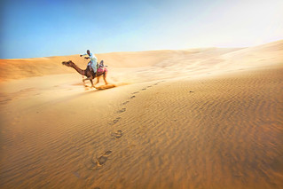 'A Bumpy Ride', India, Jaisalmer, Desert