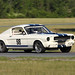 #98 1965 Shelby GT-350 by Rob Brimer