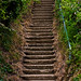Bottom of Appley Steps by garryknight