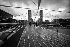 Bilbao Pedestrian Bridge