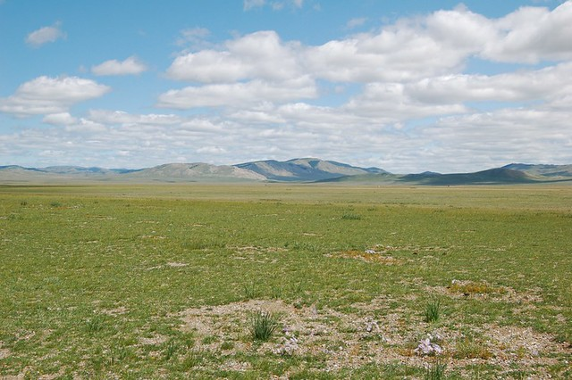 Steppe Definition