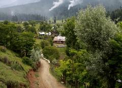pahalgam betaab valley
