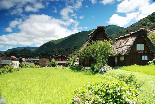Shirakawa-go 白川郷