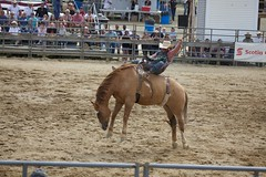 animal sports, rodeo, western riding, event, equestrian sport, sports, charreada, reining,
