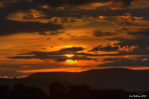 sunset sky sun seagulls clouds scotland williams gulls silhouettes karl hdr campsiefells saariysqualitypictures karlwilliams