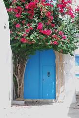 Tunisia 232