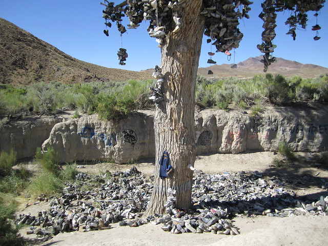 Tree Shoes Shoe Tree Nevada