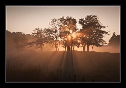 fog sunrise nikon northcarolina blueridgeparkway d300