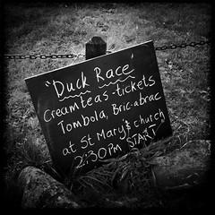 Sandsend Duck Race
