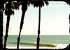 Santa Barbara Surf