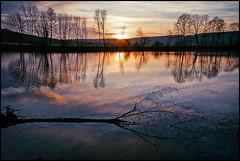 soleil couchant au bord de la Saône