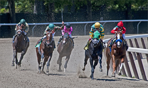 Belmont Race Track by Alida's Photos