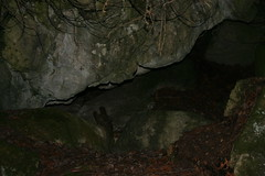 pit cave(0.0), formation(1.0), cave(1.0), caving(1.0),