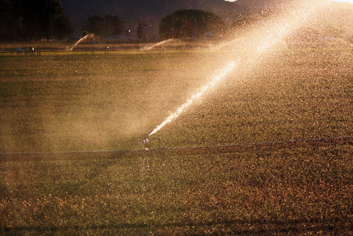Irrigating the Fields