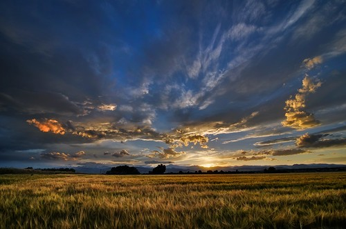 sunset summer landscape colorado longmont july