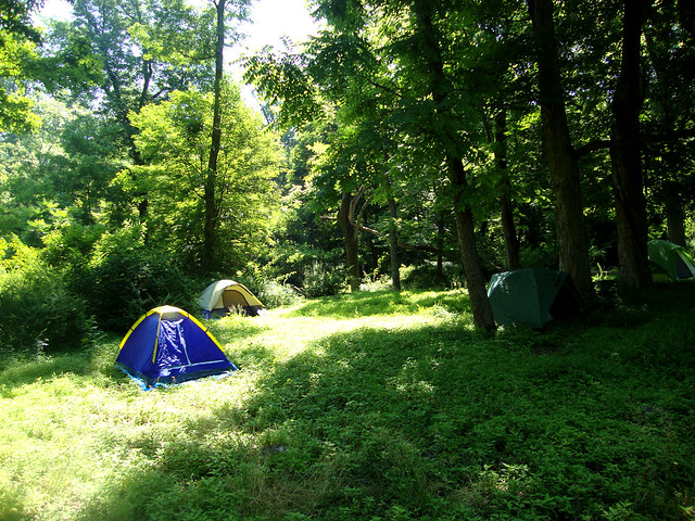 Sunny Days Backyard Camp : Tents @ Worthington State Forest  Flickr  Photo Sharing!