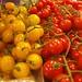 Tomatoes on the Vine at La Boqueria Market, Barcelona