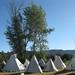 Teepees at Tamkaliks Nez Perce Pow Wow