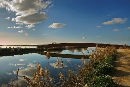 nature water reflections landscape pond nikon sardinia d200 paesaggio tati cabras quietness stagno happysummer saariysqualitypictures annatatti bestcapturesaoi elitegalleryaoi