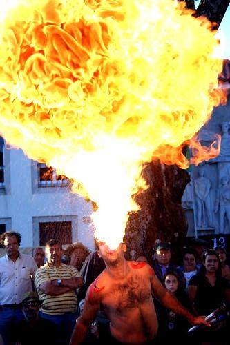 Cuspidor de fogo by @uroraboreal