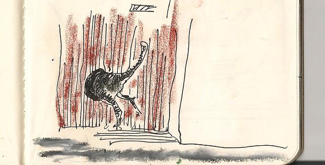 gatera con gato, Alcorisa