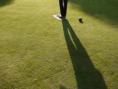 baseball field(0.0), golf club(0.0), golf(0.0), flooring(0.0), grass(1.0), sports(1.0), recreation(1.0), outdoor recreation(1.0), artificial turf(1.0), green(1.0), lawn(1.0),