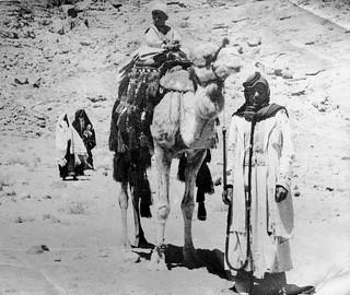 Sinia  Desert 1954  5BOD MELF R.E.M.E trek.