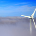 wind farm australia by tim phillips photos