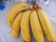 plant(0.0), calabaza(0.0), cooking plantain(1.0), banana(1.0), produce(1.0), fruit(1.0), food(1.0), winter squash(1.0),